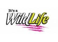 It´s a Wild Life